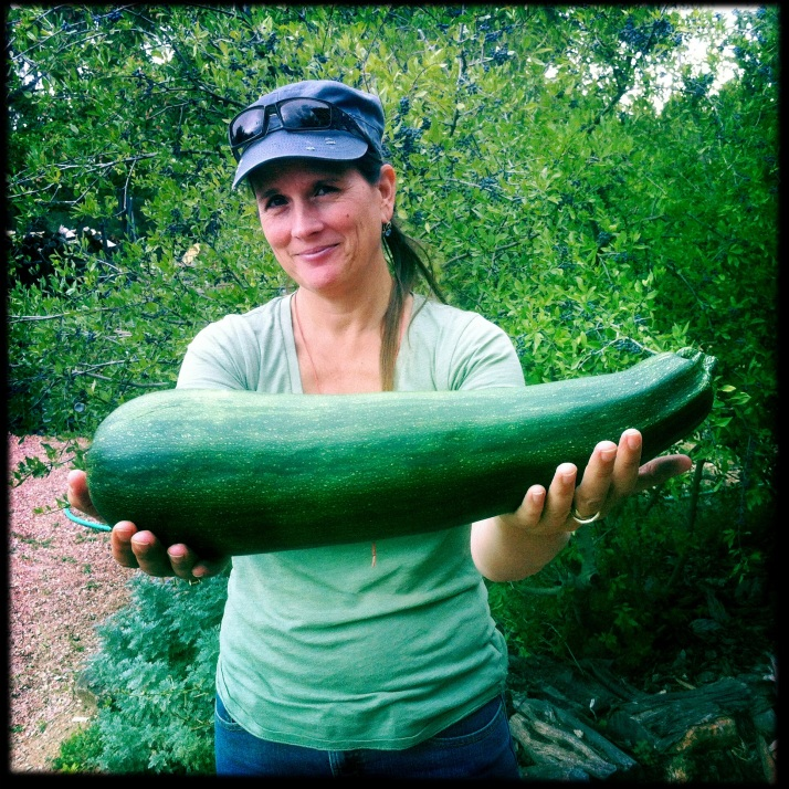 Dawn dropped by with a giant zucchini. Time to get out the grater!