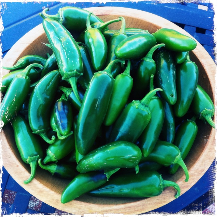 I can't even eat jalapeños! Yet I grow some every year. These will get pickled, because I delight in the idea of pickled peppers. Then I can always have some handy when a spicy dish calls for one or two.