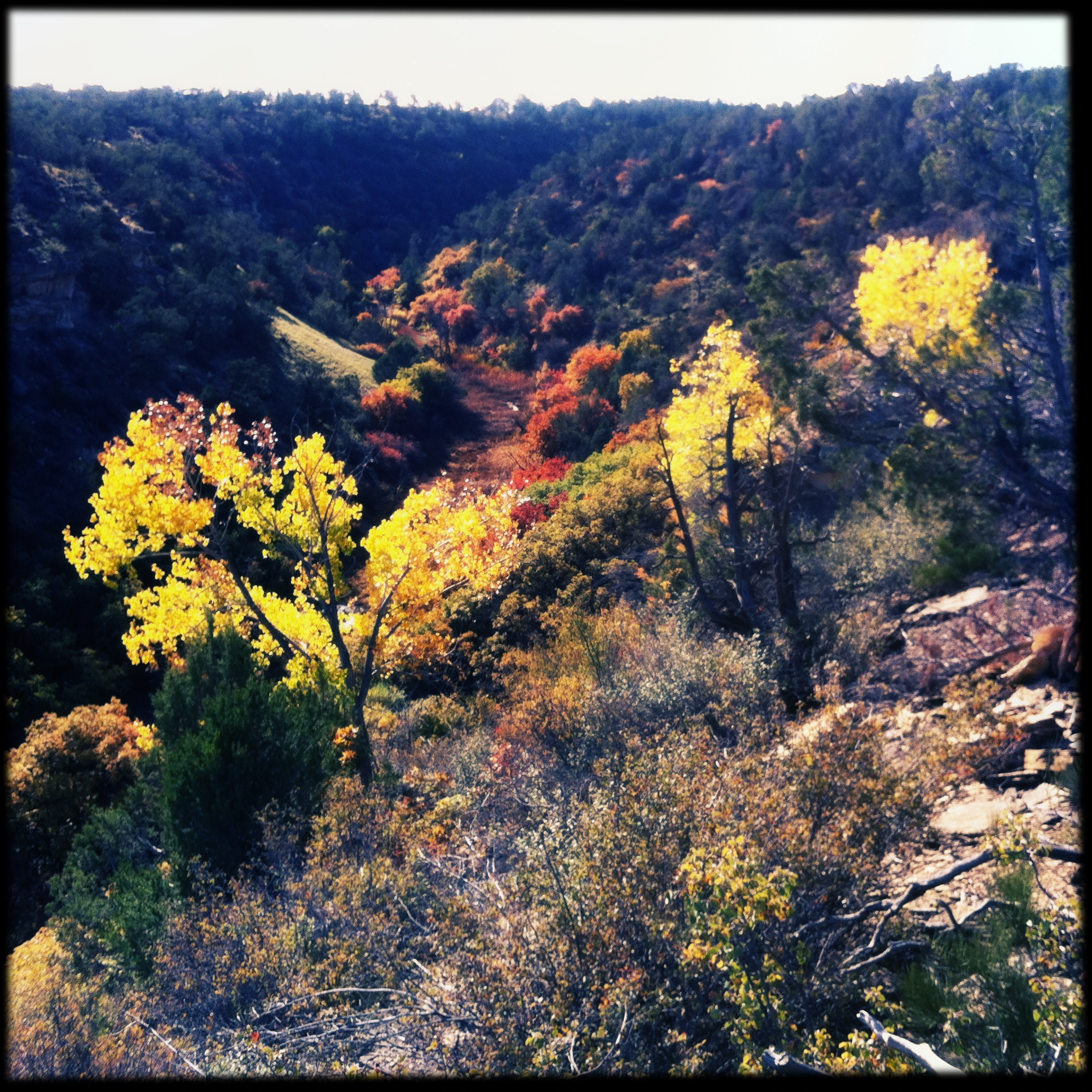 October 12, the colors continue to intensify.