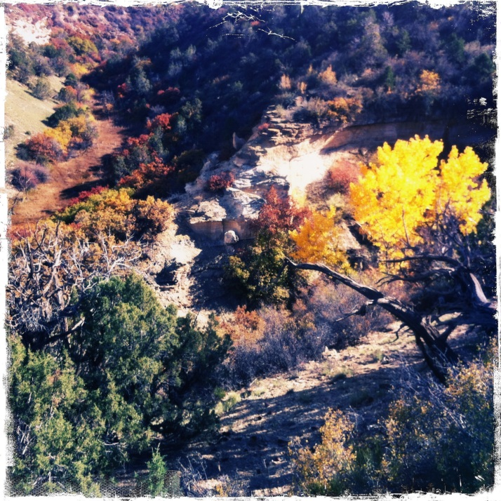 Back at the canyon on an afternoon walk. Living inside a kaleidoscope...