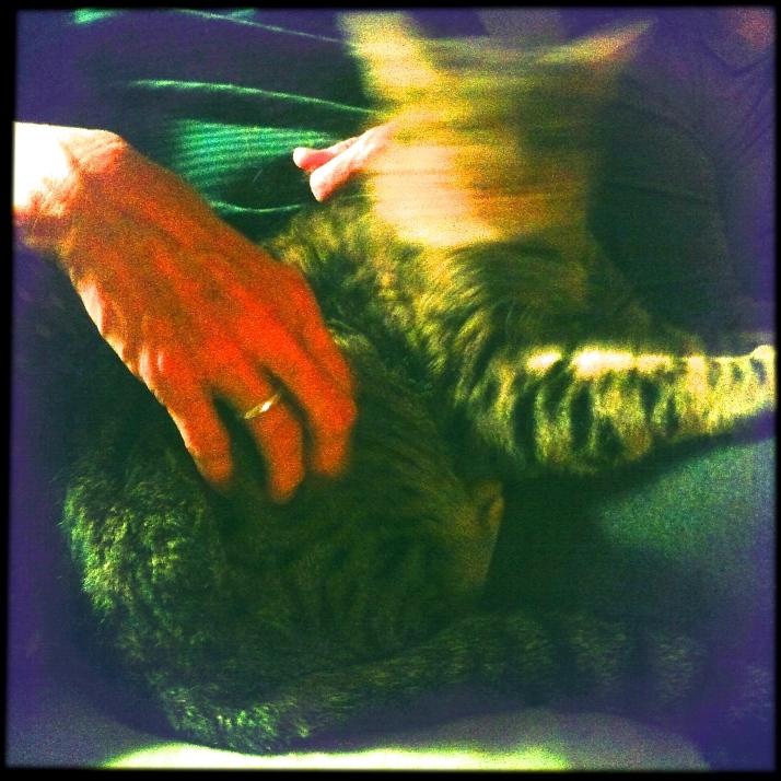 Suzi teases Teddy Kittidy