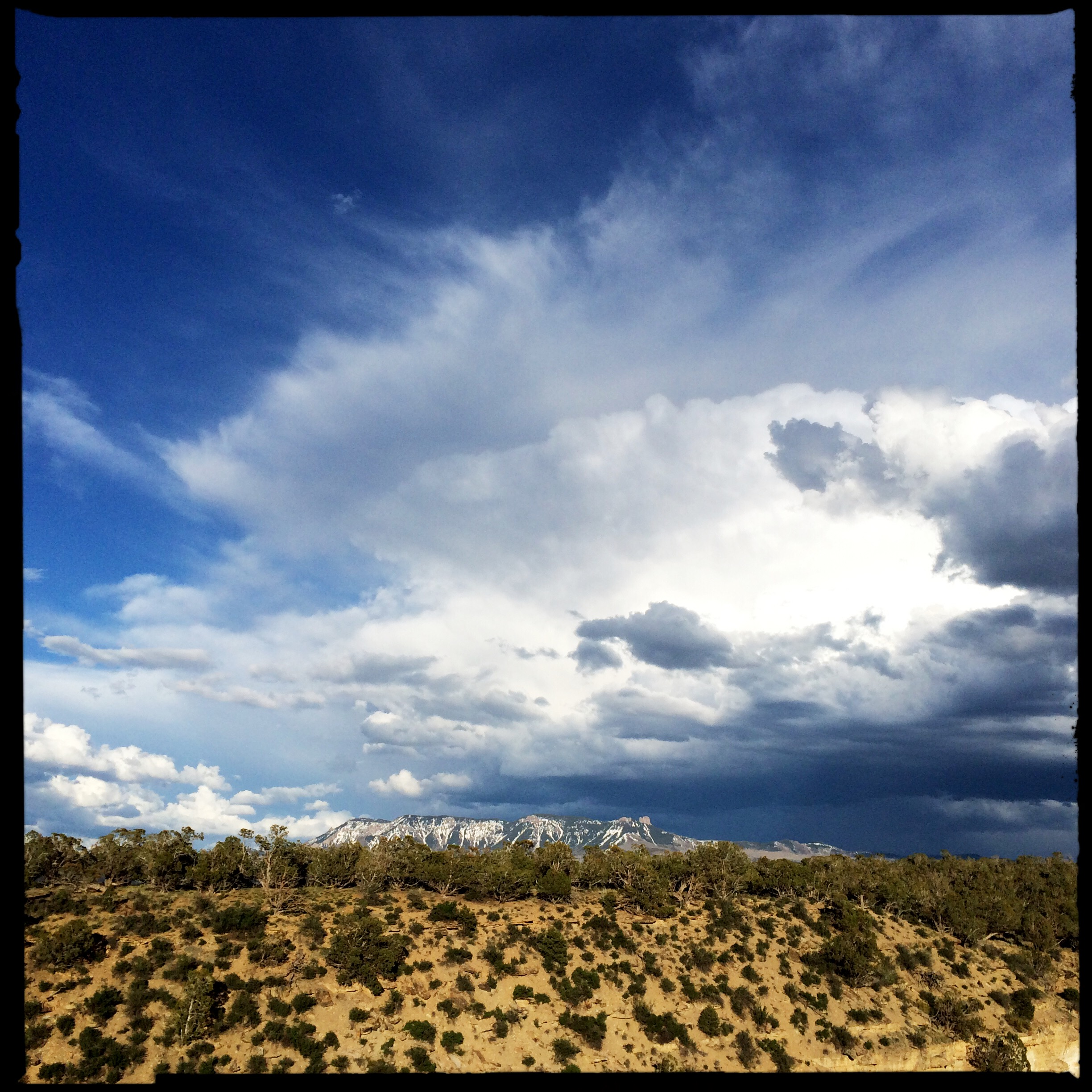 The skies have been crazy gorgeous with all this moisture hovering around.