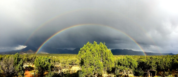 Rain moved through again last night, this time early enough to leave a double rainbow in its wake. I alerted the Bad Dog Ranch that they were centered underneath it. The next day I received a rainbow alert from them. I love this about where we live, that we care about rainbows.